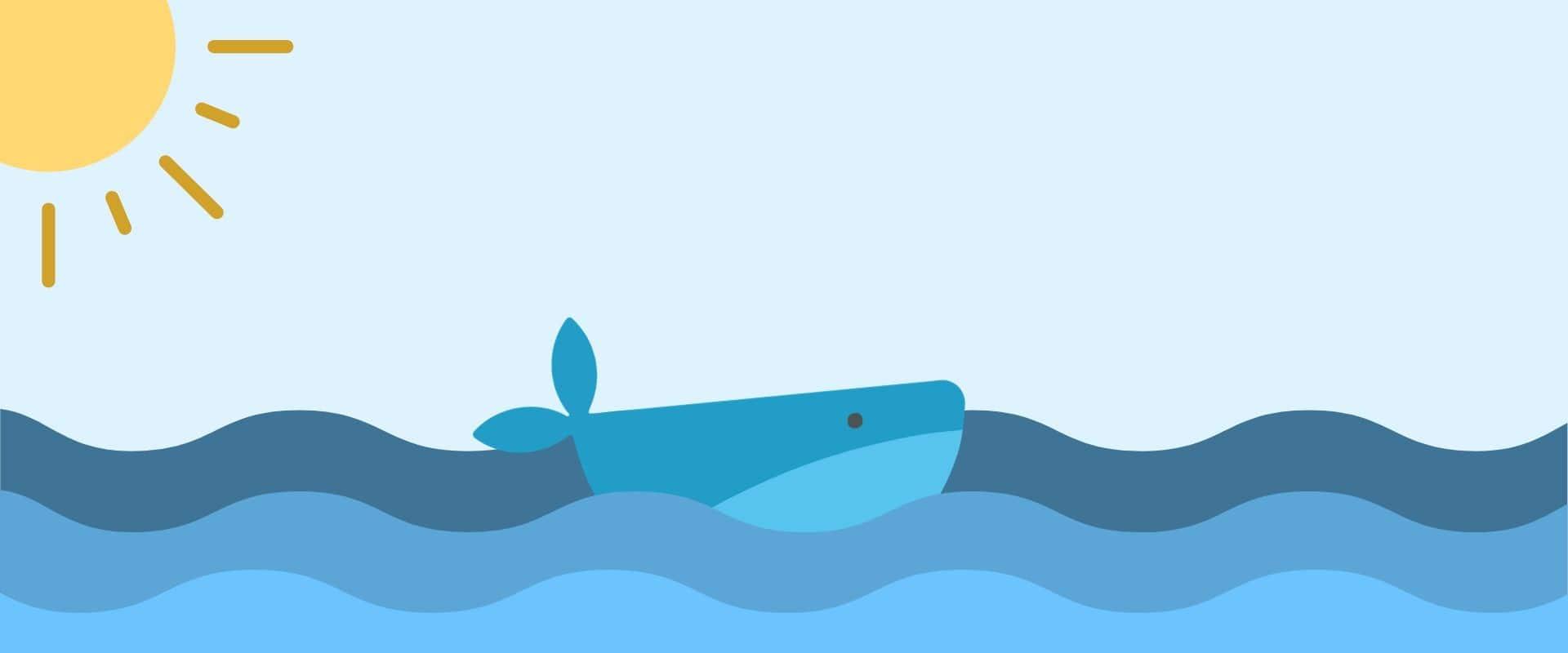 La Baleine Basque réapparaît !