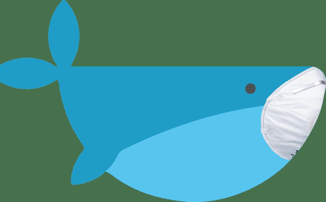 La Baleine face au Coronavirus